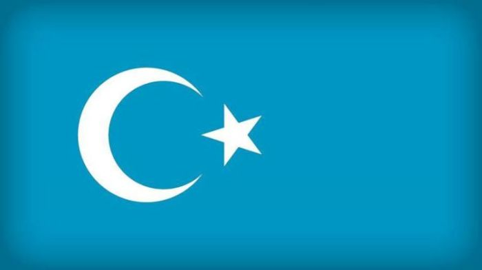 uyghur-bayraqi